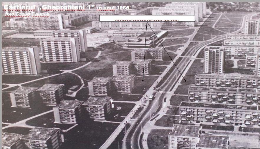 cartier-gheorgheni-1